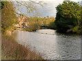NZ8809 : River Esk, Weir at Ruswarp by David Dixon