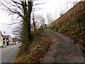 ST0090 : Steep side road in Williamstown by Jaggery