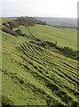ST5965 : Ripples below Maes Knoll by Neil Owen