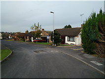 ST0307 : Houses in Culm Lea, Cullompton by Rob Purvis