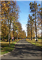 TQ0078 : Driveway to Ditton Park Manor by Des Blenkinsopp