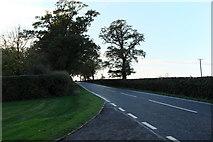 TF0323 : The A151 outside Grimsthorpe Castle by Bob Harvey