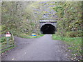 SK1871 : The entrance to Headstone Tunnel by Marathon