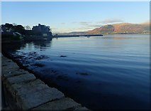 J1811 : King John's Castle and the northern breakwater of Carlingford Harbour by Eric Jones
