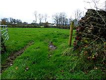 H5472 : An open field, Bracky by Kenneth  Allen
