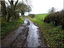 H5572 : Muddy along Stoneleigh Road by Kenneth  Allen