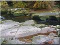 NU0601 : Northumberland Landscape : Carved Rocks Near Thrum Mill, Rothbury by Richard West