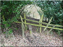 SE0927 : Stile on Halifax FP401 on the south-east side of a wide hedge by Humphrey Bolton