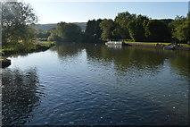 SP4408 : River Thames at Eynsham Weir by N Chadwick