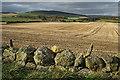 NO7592 : Field near Darnford by Anne Burgess