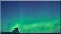 NJ3856 : Aurora Borealis by Anne Burgess