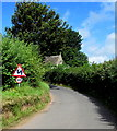 SO4510 : Warning sign - bends, Dingestow by Jaggery