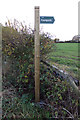 TM3567 : Footpath sign on Rendham Road by Adrian Cable