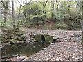 NZ1454 : Culvert on the Pont Burn by Robert Graham