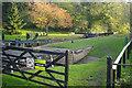 SJ5659 : Tilstone Lock by Stephen McKay