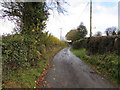 SO4019 : Late autumn view of a lane in Cross Ash, Monmouthshire by Jaggery