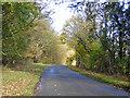 TL1246 : Lane towards Moggerhanger by Robin Webster