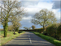 TL1459 : Road east of Lower Honeydon Farm by Robin Webster