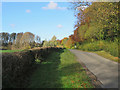 TL6267 : Landwade Road in autumn by John Sutton