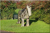SJ6352 : Horse sculpture, Nantwich Junction by Stephen McKay