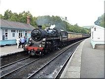 NZ8205 : Railway at Grosmont [4] by Michael Dibb
