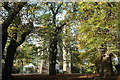 TQ4376 : Gothic tower amongst trees by M J Roscoe