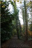 TQ1463 : Path to Copsem Lane, Esher Common by Mike Pennington
