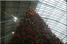 TQ3083 : Looking up at the giant Christmas tree made of fake flowers and plants in St. Pancras Station by Robert Lamb