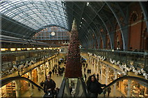 TQ3083 : View of the giant Christmas tree made of fake flowers and plants in St. Pancras Station by Robert Lamb