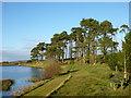 NS9335 : Bench by Lochlyoch Reservoir by Alan O'Dowd