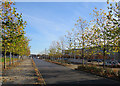 TL4258 : West Cambridge: Charles Babbage Road by John Sutton