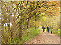 SJ6467 : Dog walkers on the Whitegate Way by Stephen Craven