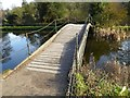 ST7733 : Iron Bridge, Stourhead Gardens by Philip Halling