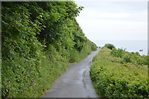 SX5148 : Road to the sea, Wembury by N Chadwick