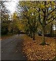 SK5902 : Path through Victoria Park, Leicester by Mat Fascione
