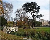 TQ1780 : Walpole Park by Stephen Richards