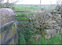 SE0028 : Stile on Wadsworth FP59 at Dick Ing by Humphrey Bolton