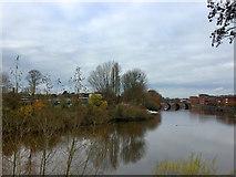 SO8454 : River Severn by John Allan