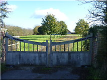 ST9357 : The driveway to the farm by Michael Dibb