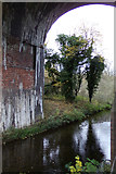 TL1217 : River Lea at Chiltern Green Viaduct by Adrian Cable