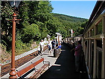 SH6441 : A busy time at Tan-y-Bwlch Station by John Lucas