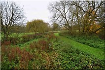 SP7006 : Cuttle Brook, Thame, Oxon by P L Chadwick