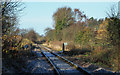NZ5710 : Railway north-west from Great Ayton Station by Trevor Littlewood