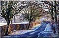 SP8682 : Grange Road by Steve Smith