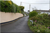 SX4948 : Furzehill Rd by N Chadwick
