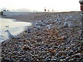 TQ8209 : Gulls at Harbour Beach by Oast House Archive