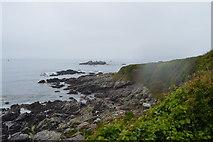 SX4948 : Coastline near Heybrook Bay by N Chadwick