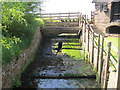 SJ4553 : The sluice at Stretton Mill  by Stephen Craven