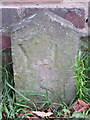 SE6049 : Boundary Stone in front of #169 Fulford Road, York by John S Turner