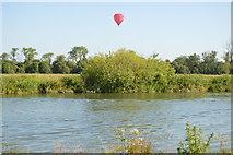 SP4710 : Balloon above a bush by N Chadwick